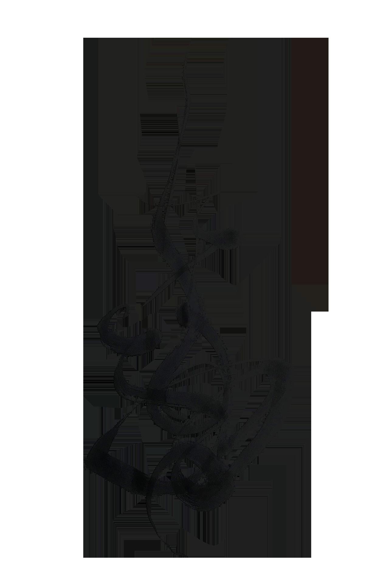 Calligraphy tarookamoto