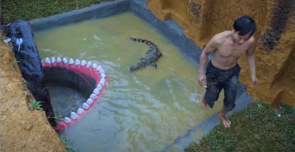 ワニをプールに入れる
