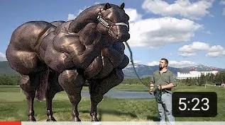 馬筋肉サムネ